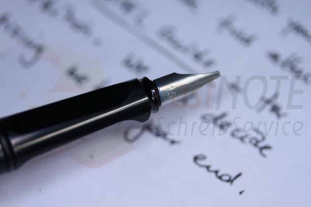 handschriftliche Erinnerungen, Memoiren, Tagebuchaufzeichnungen abtippen